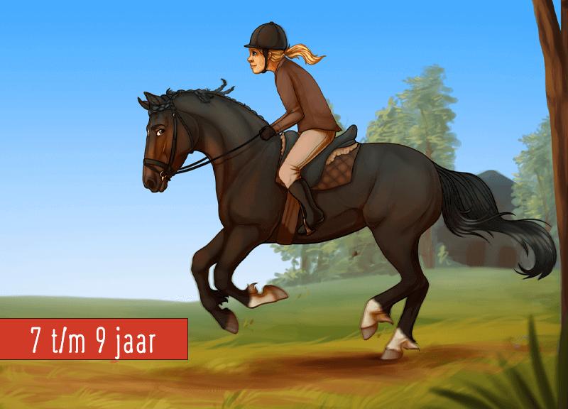 Paarden Kinderfeestje 7 Tm 9 Jaar 4tot12 Kinderfeestje Thuis
